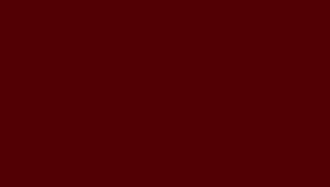RR29/RAL3009 (красный)