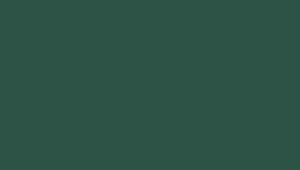 RR11/RAL6020 (темно-зеленый)