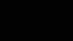 RR33/RAL9005 (черный)