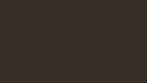 RAL8019/RR32 (темно-коричневый)